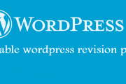 How to disable WordPress posts revision & save memory