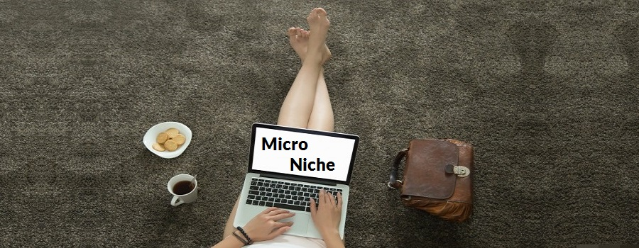 12 Tips to Start a Perfect Micro Niche Blog