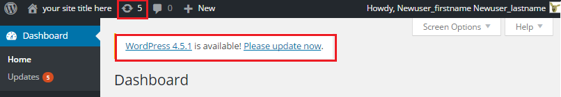 update wordpress regularly