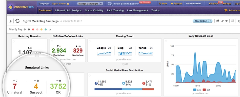 cognitiveseo-tool