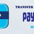 paytm-money-transfer